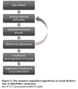 hypothesis_emotional_regulation_ks_rijn_2014