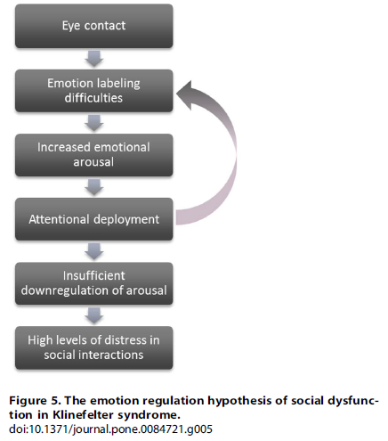 hypothesis_emotional_regulation_ks_rijn_2014